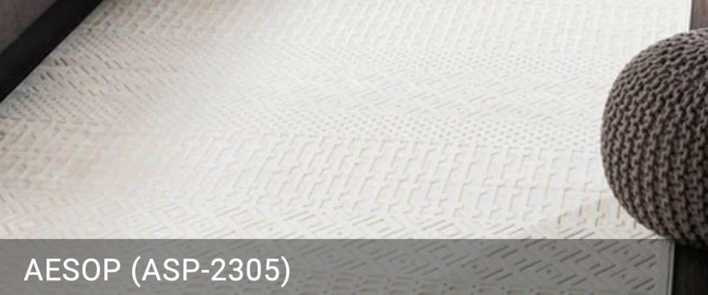 Aesop-ASP-2305-Rug Outlet USA