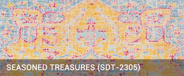 Seasoned Treasure-SDT-2305-Rug Outlet USA