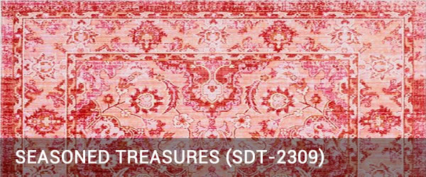 Seasoned Treasure-SDT-2309-Rug Outlet USA