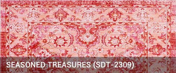 Seasoned Treasure-SDT-2309-Rug Outlet USA