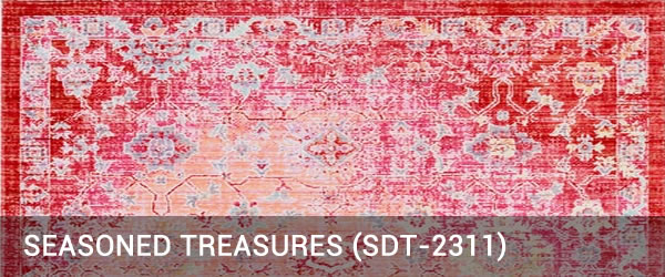 Seasoned Treasure-SDT-2311-Rug Outlet USA