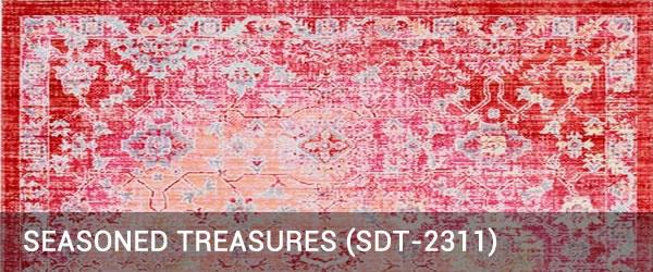 Seasoned Treasure-SDT-2311-Rug Outlet USA